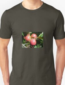 Cider Apples from Somerset T-Shirt