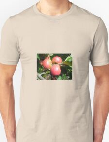 Cider Apples from Somerset Unisex T-Shirt