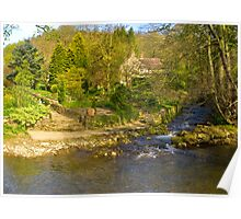 Country House Garden Poster