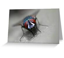 Fly out Greeting Card