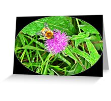 Bumble bees Greeting Card