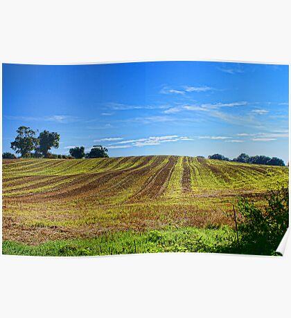 Rolling Fields Norfolk UK Poster