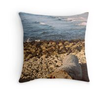 Shadowed Isolation Throw Pillow