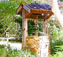 Wishing Well Cambria Pines Lodge by arline wagner