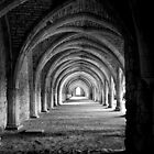 Fountains Abbey by nina3017