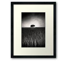 Monochrome Vision Framed Print