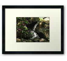 Waterfall with Pink Flowers at El Yunque (light) Framed Print