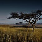 All quiet at Rorke's Drift by David Lawrence