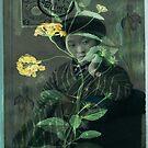 Lantana & Iris by Rene Hales