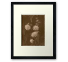 The Great Escape 2 Framed Print