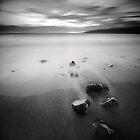 South by Steve Allsopp