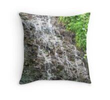 Joggins Waterfall Throw Pillow