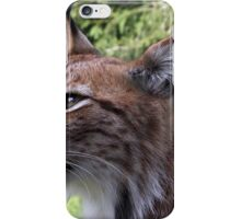 Young Lynx iPhone Case/Skin