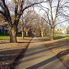Path running through Princes Park by Ameel Khan