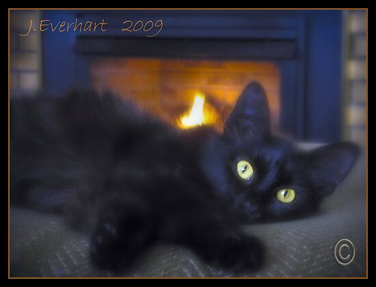 Persia by the Fireplace by Julie Everhart