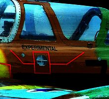 Experimental by Kurt Bippert