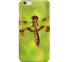 Fly Dragon Fly iPhone Case/Skin