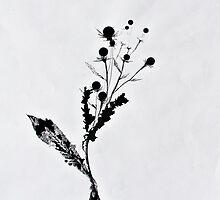 Flora_1 by GODofNEON