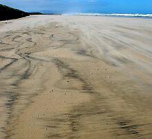 tiger sand by Tamara Cornell