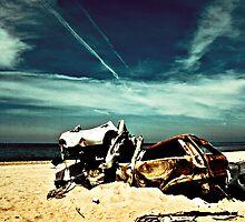 Abandoned car by Elvira Leone