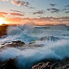 Currumbin Alley by D Byrne