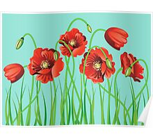 Poppy with Grass Poster