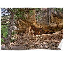 Canyon Dwelling Poster