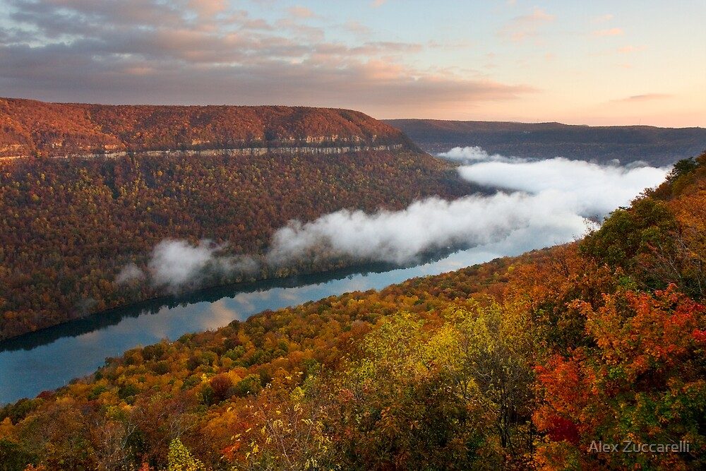 Tennessee River Gorge - Chattanooga, Tennessee by Alex Zuccarelli