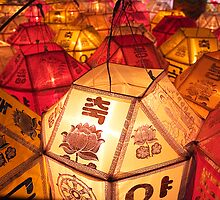 Samgwang Lanterns - Samgwang Temple, South Korea by Alex Zuccarelli