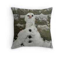 Mr Frostie Throw Pillow