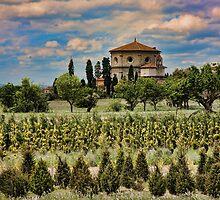 Castiglion Fiorentino Italy by Hugh Smith