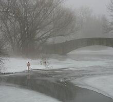 Winter Lagoon by hoppmann