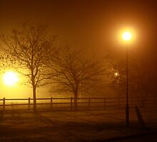 Foggy Evening in County Clare by Chuck Zacharias