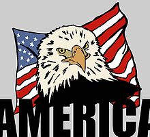 American eagle by Logan81