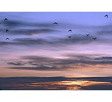 Totally Sky Photographic Print
