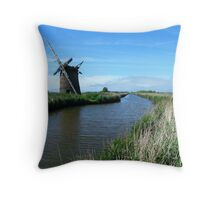 Delapidated Throw Pillow