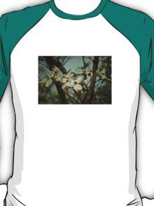 Cool Breeze T-Shirt