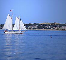 Sail Away by jenndes