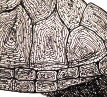 turtleman  Sticker