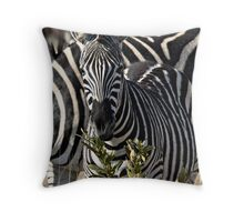 Zebra Stripe Confusion Throw Pillow