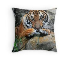 Tiger, Tiger Burning Bright Throw Pillow