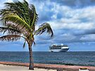 Enchantment of the Seas from Coco Cay in the Bahamas by AuntDot