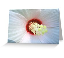 Proud Hibiscus Greeting Card