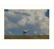 """In the Clouds"" Art Print"