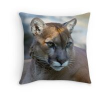 Contemplating Cougar Throw Pillow