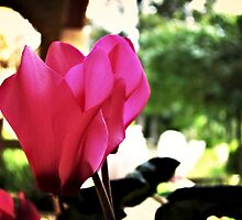 Tantalizing Tulip by artyfreak