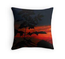 Sundown ! Throw Pillow