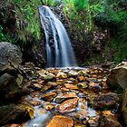 Waterfall Gully, Second Falls by Dale Allman