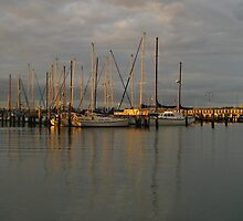 Hastings, Mornington Peninsula by SusanAdey