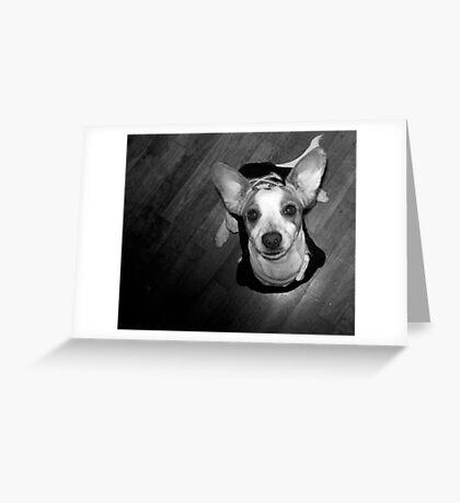 winnie Greeting Card
